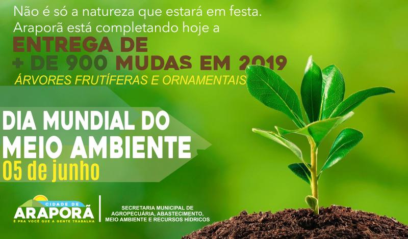 Imagem destaque notícia PREFEITURA ESTIMULA O PLANTIO DE ÁRVORES
