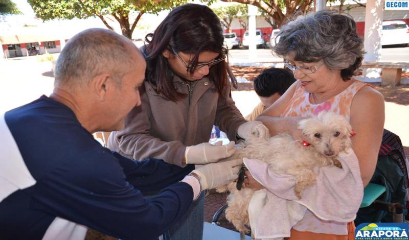 Imagem destaque notícia Vigilância Epidemiológica inicia campanha de vacinação antirrábica