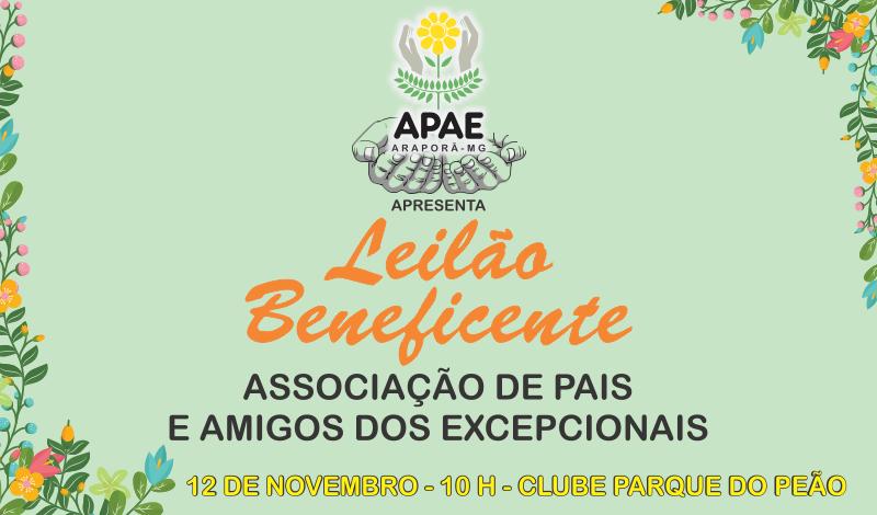 Imagem destaque notícia Leilão da APAE será realizado no dia 12 de novembro