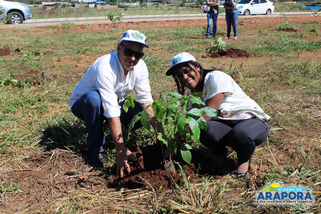 Imagem destaque notícia Recuperação de Área Degradada é executada na Semana do Meio Ambiente